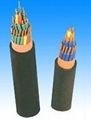Fluoroplastic insulated flame-proof PVC sheathed control cable