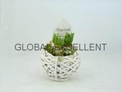 Sell willow garden planter