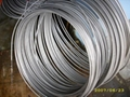 Seamless Stainless Steel Coil Tubes