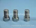 不鏽鋼非標螺絲加工 1