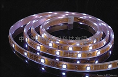 SMD 5050 30leds with water-proof tube
