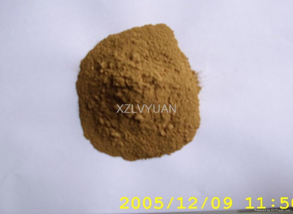 Ginkgo Biloba Extract 4