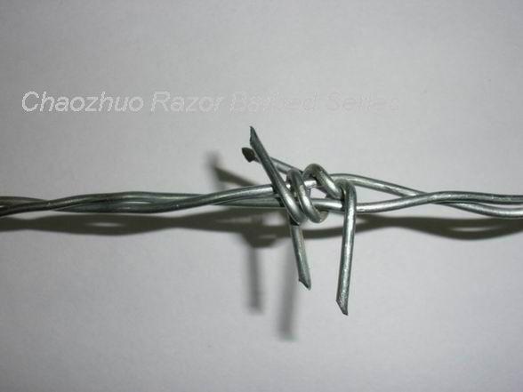 镀锌刺绳 1