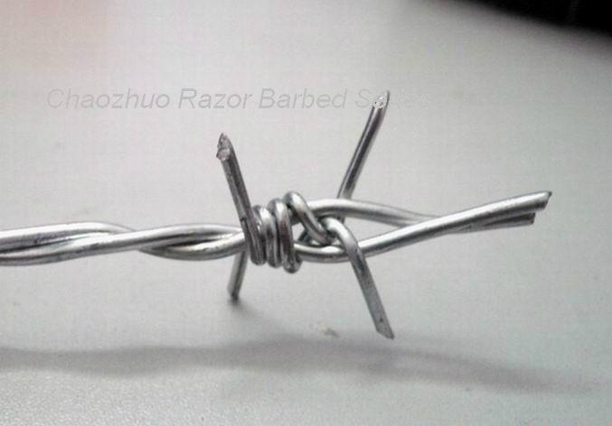 镀锌刺绳 2