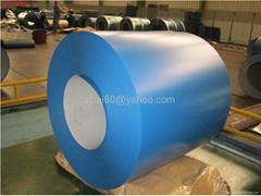 Prepainted Steel Sheet Coil