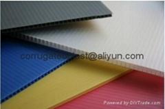 Polypropylene PP Corrugated Sheet