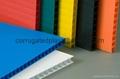 Pp Corrugated Plastic Tray 2440x1220mm Tfl Tray China