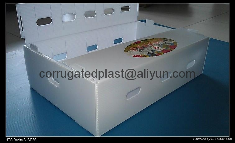 Corrugated Plastic Fruits Tray Vegetables Box As