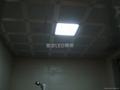 大功率LED 220V 48W 四頭豆膽組合天花燈 2