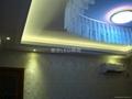 大功率LED 220V 48W 四頭豆膽組合天花燈 3