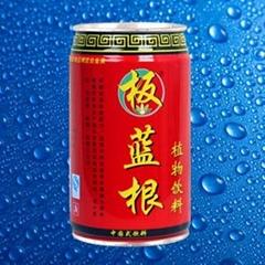 板藍根植物飲料紅罐
