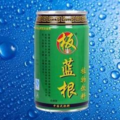 板藍根植物飲料綠罐
