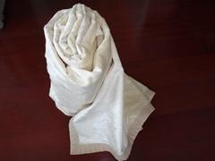 野蚕丝素色立绒薄毯