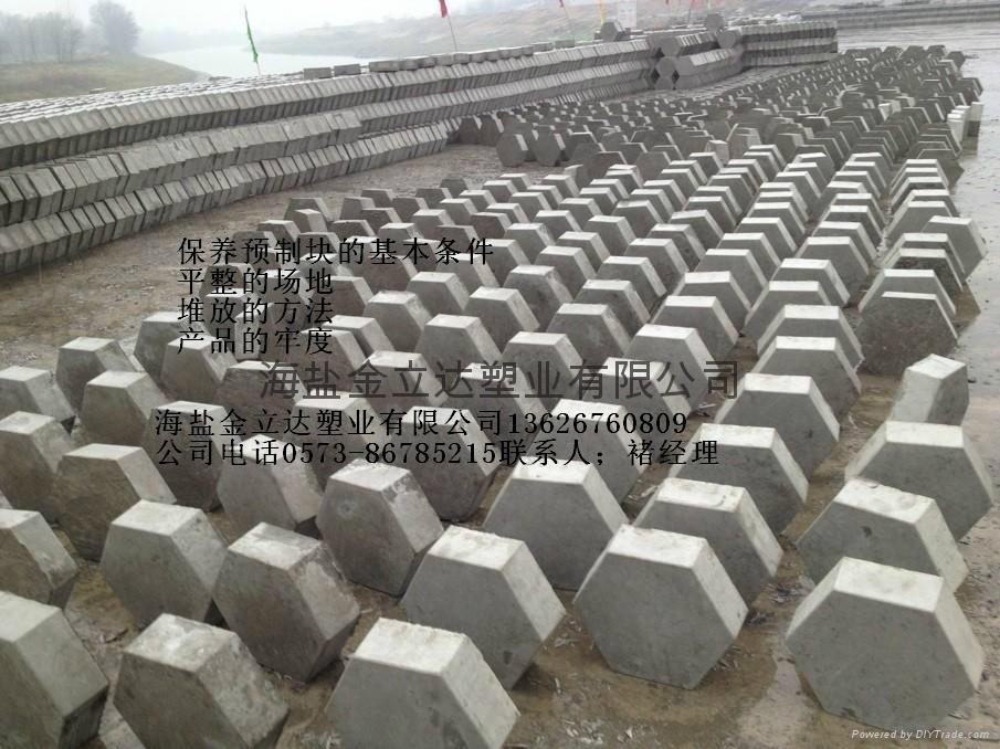 重庆河道护坡水泥块塑料模 1