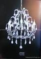 Selling elegant pendant lamp 2