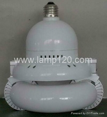 Integrated Magnetic Electrodeless Lamp with E27/E40 Base