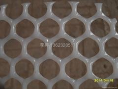 安平县各种规格聚乙烯塑料平网