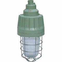 BAD51-250防爆节能灯