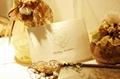 Wide varieties Christmas card & wedding card 3