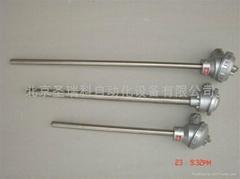 北京裝配熱電偶WRNK-230