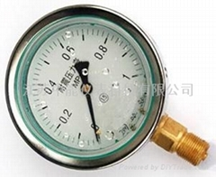 YN系列耐震壓力表