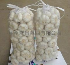 2012 fresh pure white garlic