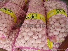 20kg/mesh bag--5.0cm normal white garlic