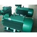 上峰水泥铜陵公司3800KW高压电机维修 1