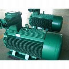 上峰水泥铜陵公司3800KW高压电机维修