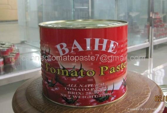 番茄醬出口 3