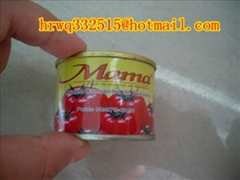 canned tomato paste supply for Africa