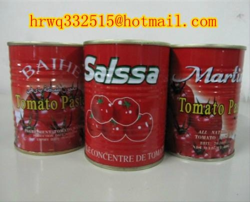 canned tomato paste supply for Africa 3