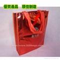 Lamination non woven bag 1