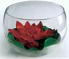 玻璃金鱼缸