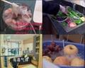 果蔬解毒機、果蔬袪毒洗菜機 5