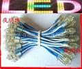 LED外露字燈串(廠家直銷)