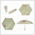 bottle umbrella 2