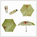 bottle umbrella 3