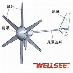 Wellsee horizontal Wind Generator permanent magnet generator 300w