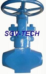 globe valve flange ends cast valve