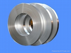 Stainless steel leaf spring
