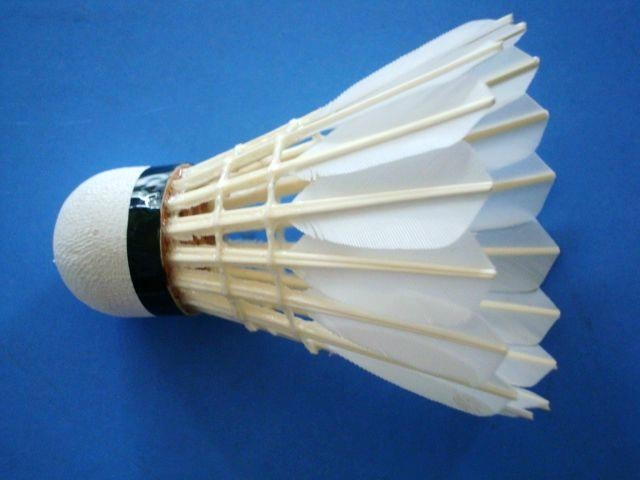 Badminton Equipment Goose Feather Shuttlecock DP 204 1