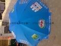 廣告禮品展銷太陽傘 3