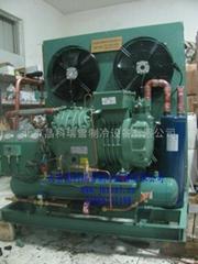 北京比泽尔bitzer冷库制冷压缩机组