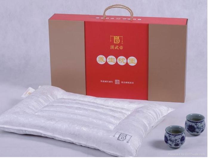 漢武帝藥枕 1