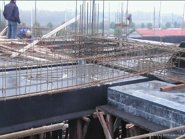 增强型建筑模板 3