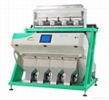 CCD RICE COLOR SORT 2
