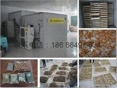 中藥材中草藥烘乾機設備