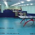 乒乓球塑膠地板 2