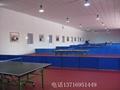 乒乓球塑膠地板 3